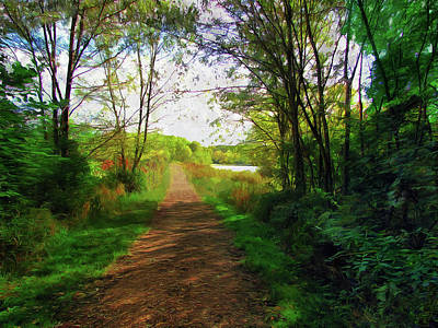 Photograph - A Woodland Stroll by Cedric Hampton