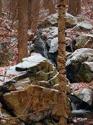 Photograph - A Wood's Waterfall  by Raymond Salani III