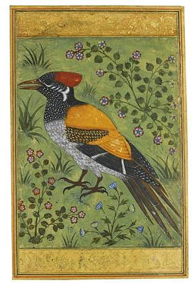 Yellow Painting - A Yellow Backed Woodpecker by Mughal