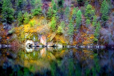 Photograph - A Yellow Lake Calm by Tara Turner