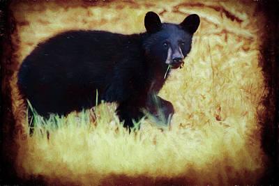 Digital Art - A Young Black Bear by Rusty R Smith