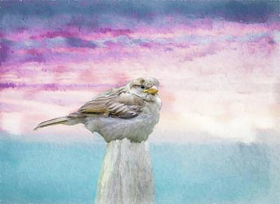 Digital Art - A Young Sparrow On Post. by Rusty R Smith