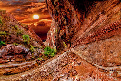 Photograph - A Zion Riverside Walk Sunset by Blake Richards