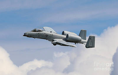 Photograph - A10 Wart Hawg  by Rick Lipscomb