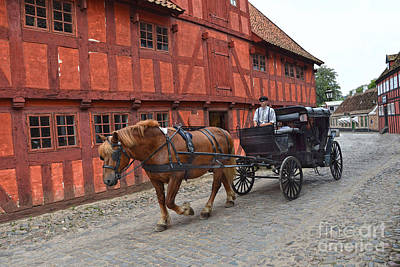 Photograph - Aarhus Horse And Buggy by Catherine Sherman