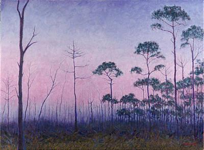 Abaco Pines At Dusk Art Print