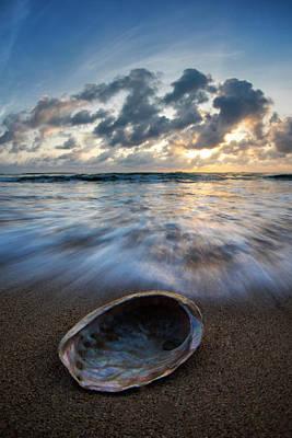 Abalone Wall Art - Photograph - Abalone Swirl. by Sean Davey