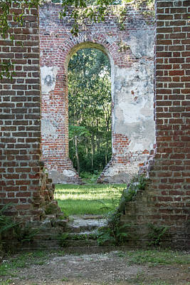 Photograph - Abandon Church In South Carolina by Randy J Heath
