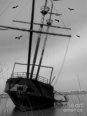 Photograph - Abandon by Heather King