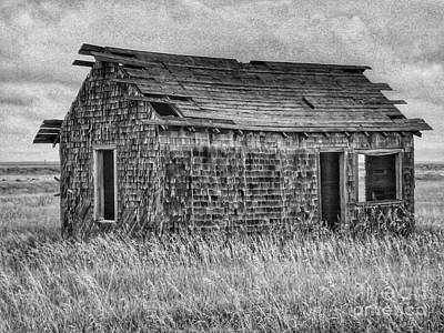 Photograph - Abandonded On The Plains by Tony Baca