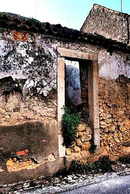 Photograph - Abandoned 07 by Dora Hathazi Mendes