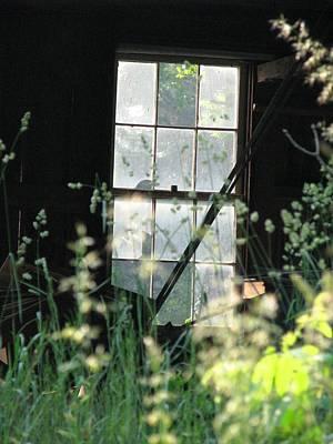 Photograph - Abandoned by Angela Davies