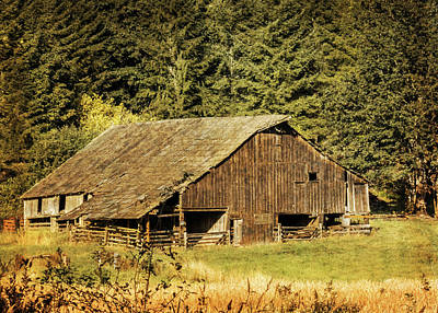 Photograph - Abandoned  Barn - Grunge by Patti Deters