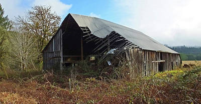 Photograph - Abandoned Barn In Alsea by Judy Wanamaker