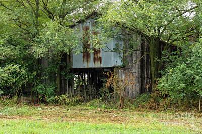 Photograph - Abandoned Barn by Jennifer White