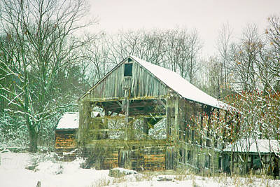 Photograph - Abandoned Barn by Natalie Rotman Cote