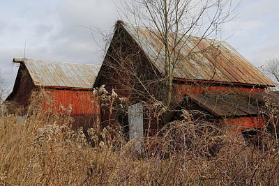 Pasta Al Dente - Abandoned Barns by Jeff Roney