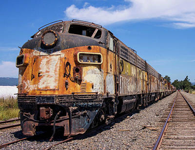 Finds A Way Photograph - Abandoned Bessemer And Lake Erie Trains Schellville California by Brian Maroevich