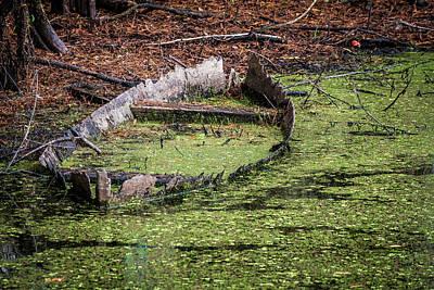 Photograph - Abandoned Boat by Paul Freidlund