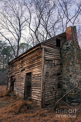 Photograph - Abandoned Cabin In The Woods by Liesl Marelli