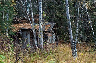 Photograph - Abandoned Cabin - Salcha Alaska by Cathy Mahnke