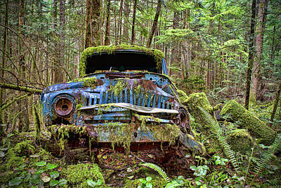 Rusty Cars Photograph - Abandoned Car In The Forest by Peggy Collins