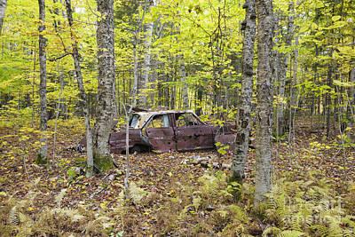 Abandoned Car- Woodstock New Hampshire Art Print by Erin Paul Donovan