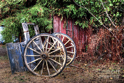 Photograph - Abandoned Cart by Jim And Emily Bush