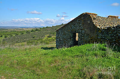 Abandoned Cottage In Alentejo Art Print by Angelo DeVal