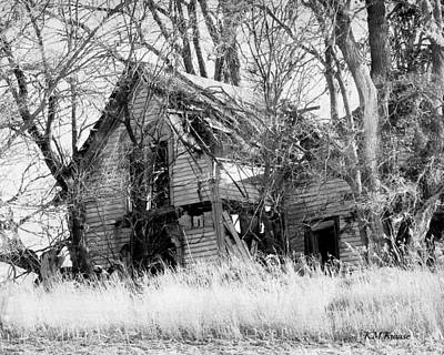Photograph - Abandoned Country Tree House by Kathy M Krause