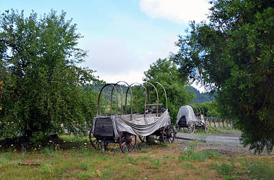 Photograph - Abandoned Cover Wagons by Barbara Snyder