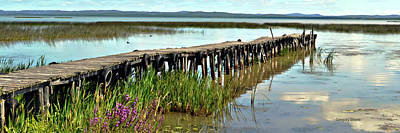 Riverstone Gallery Photograph - Abandoned Dock  by Gregory Steele