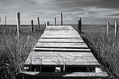 Photograph - Abandoned Dock by Shawn Colborn