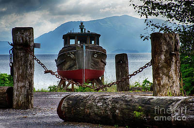 Photograph - Abandoned Dream Alaska 2 by Bob Christopher