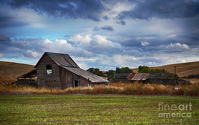 Photograph - Abandoned Farm Palouse Washington by Bob Christopher