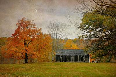 Abandoned Home Art Print by Diana Angstadt