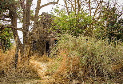 Photograph - Abandoned Home by Jean Noren