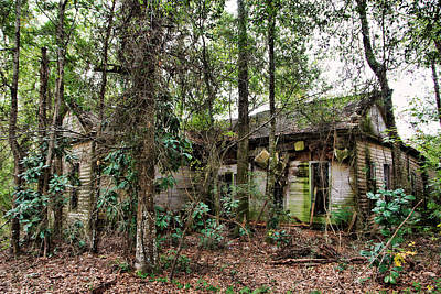 Photograph - Abandoned House In Alabama by Lynn Jordan
