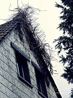Abandoned Houses Photograph - Abandoned House by Sarah Loft