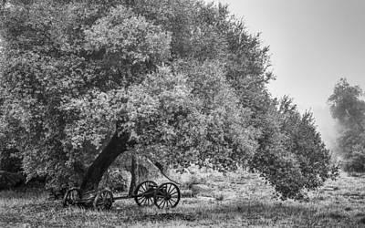 Wagon Photograph - Abandoned by Joseph Smith