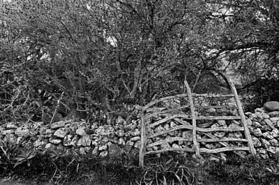 Photograph - Abandoned Minorcan Country Gate by Pedro Cardona Llambias