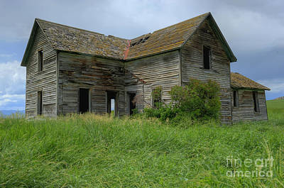 Photograph - Abandoned Montana Homestead by Sandra Bronstein