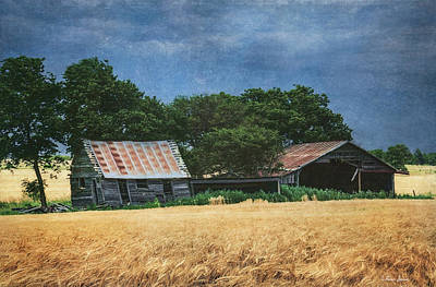 Photograph - Abandoned Old Shack And Barn In Wheat Field by Anna Louise