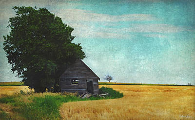 Photograph - Abandoned Old Shack In Wheat Field by Anna Louise