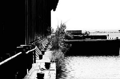 Marquette Photograph - Abandoned Ore Dock by Kendall Tabor