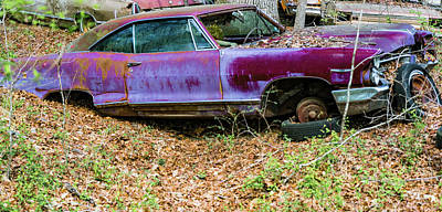 Photograph - Abandoned Purple Vehicle In The Woods by Douglas Barnett