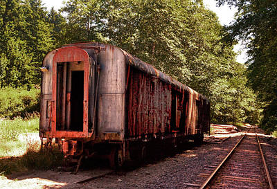 Photograph - Abandoned Rail Car 006 by George Bostian