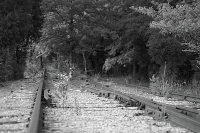 Photograph - Abandoned Railroad Track 10 by Joseph C Hinson Photography