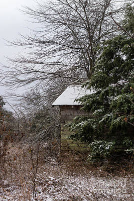 Photograph - Abandoned Shed by Jennifer White