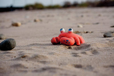 Photograph - Abandoned Toy Crab At The Beach by Sandy Swanson